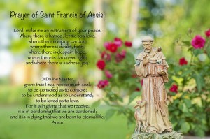 prayer-of-st-francis-of-assisi-bonnie-barry